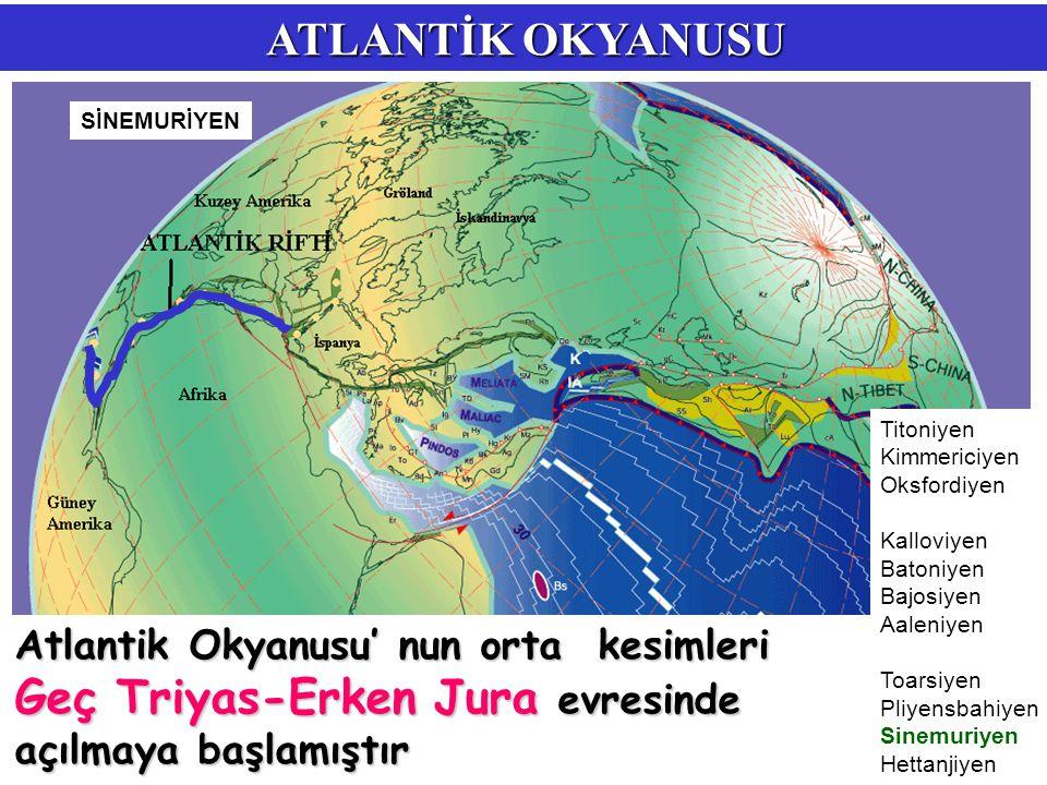 ATLANTİK OKYANUSU Atlantik Okyanusu' nun orta kesimleri Geç Triyas-Erken Jura evresinde açılmaya başlamıştır Titoniyen Kimmericiyen Oksfordiyen Kallov