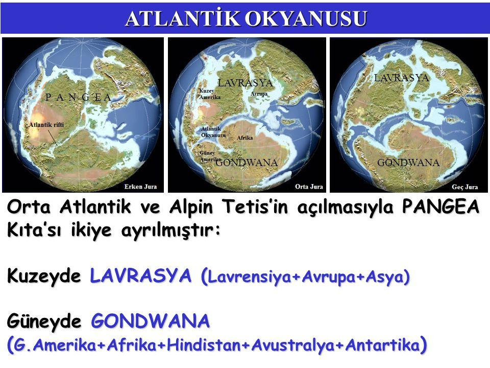 LAVRASYA GONDWANA P A N G E A ATLANTİK OKYANUSU Orta Atlantik ve Alpin Tetis'in açılmasıyla PANGEA Kıta'sı ikiye ayrılmıştır: Kuzeyde LAVRASYA ( Lavrensiya+Avrupa+Asya) Güneyde GONDWANA ( G.Amerika+Afrika+Hindistan+Avustralya+Antartika )
