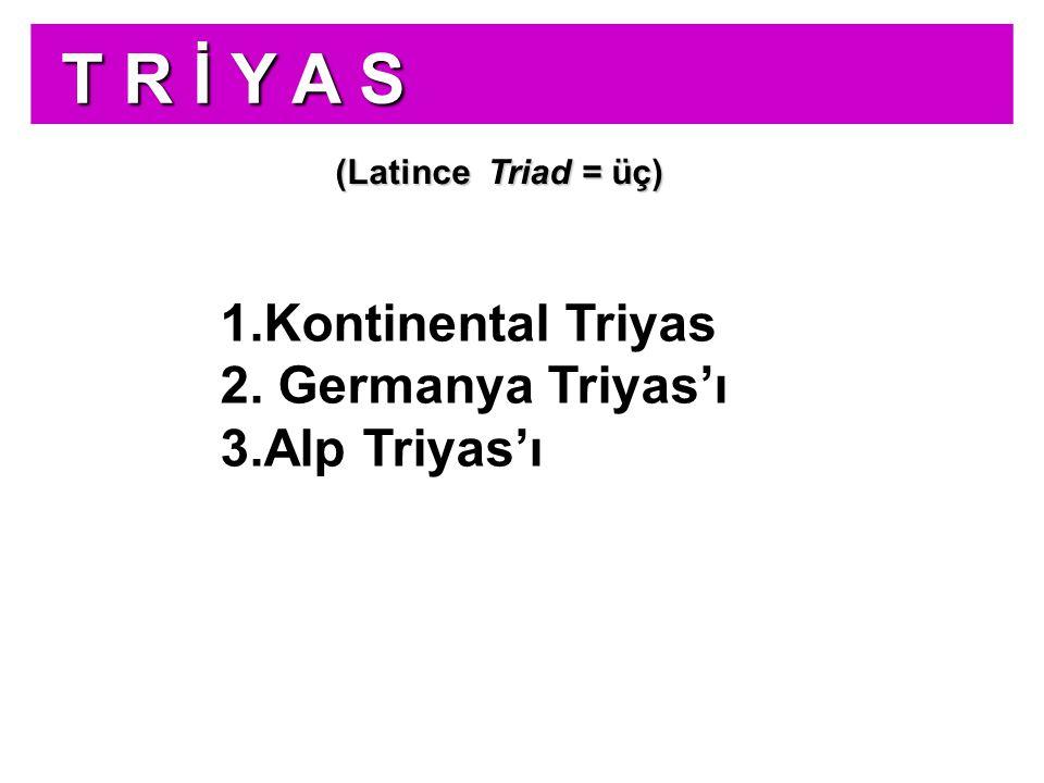 J U R A J U R A bölümleme Jura Sistemi üç seriye bölünmüştür: MALM ( Beyaz Jura ) Üstte MALM ( Beyaz Jura ) DOGGER ( Esmer Jura ) OrtadaDOGGER ( Esmer Jura ) LİYAS ( Kara Jura ) Altta LİYAS ( Kara Jura )