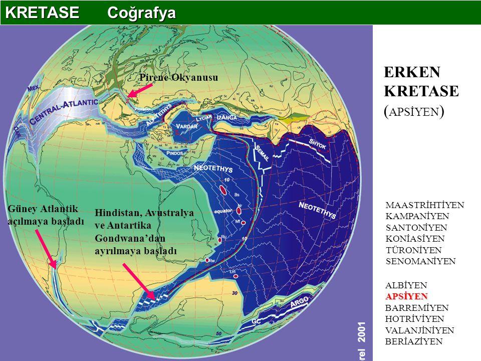 APSİYEN ALBİYEN APSİYEN BARREMİYEN HOTRİVİYEN VALANJİNİYEN BERİAZİYEN MAASTRİHTİYEN KAMPANİYEN SANTONİYEN KONİASİYEN TÜRONİYEN SENOMANİYEN Pirene Okyanusu Güney Atlantik açılmaya başladı Hindistan, Avustralya ve Antartika Gondwana'dan ayrılmaya başladı ERKEN KRETASE ( APSİYEN ) KRETASE Coğrafya