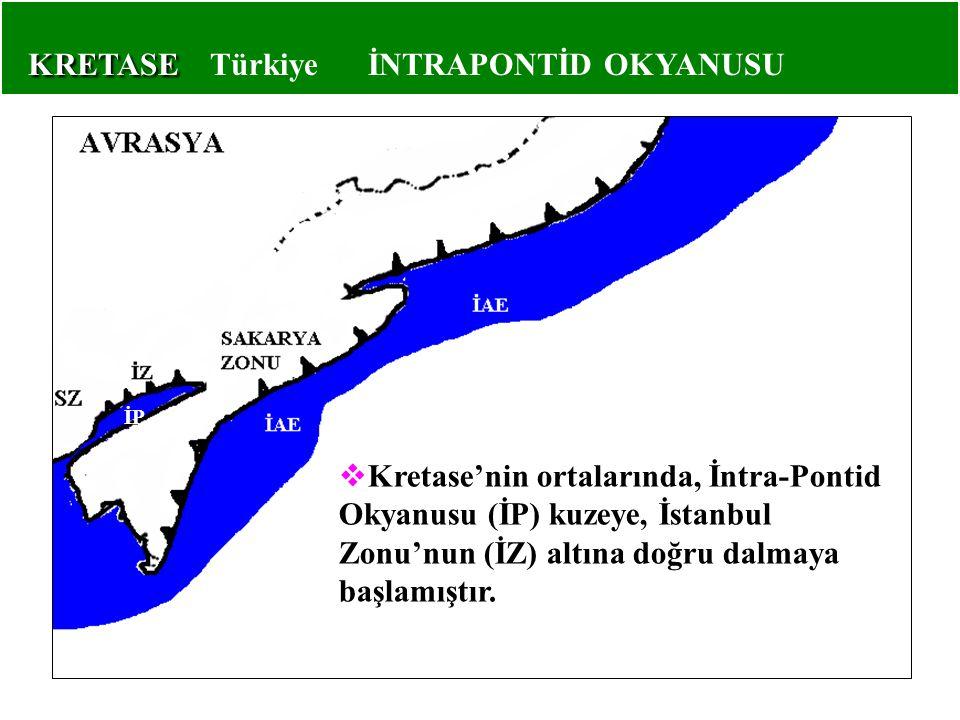  Kretase'nin ortalarında, İntra-Pontid Okyanusu (İP) kuzeye, İstanbul Zonu'nun (İZ) altına doğru dalmaya başlamıştır. İP KRETASE KRETASE Türkiye İNTR