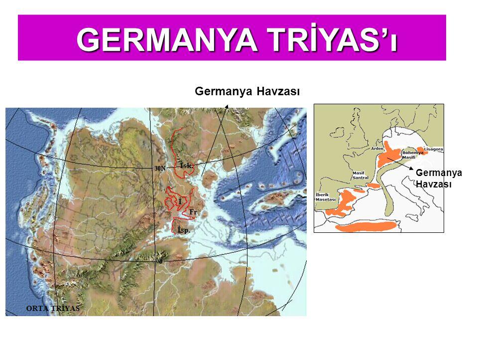 GERMANYA TİPİ TRİYAS'IN GÖRÜLDÜĞÜ ALANLAR GERMANYA TRİYAS'ı