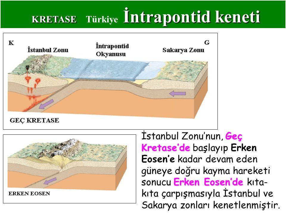 KRETASE İntrapontidkeneti KRETASE Türkiye İntrapontid keneti Geç Kretase'de Erken Eosen'de İstanbul Zonu'nun, Geç Kretase'de başlayıp Erken Eosen'e kadar devam eden güneye doğru kayma hareketi sonucu Erken Eosen'de kıta- kıta çarpışmasıyla İstanbul ve Sakarya zonları kenetlenmiştir.