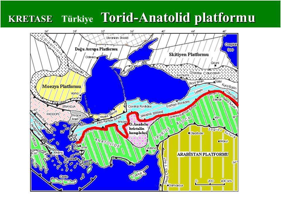 KRETASE Torid-Anatolid platformu KRETASE Türkiye Torid-Anatolid platformu