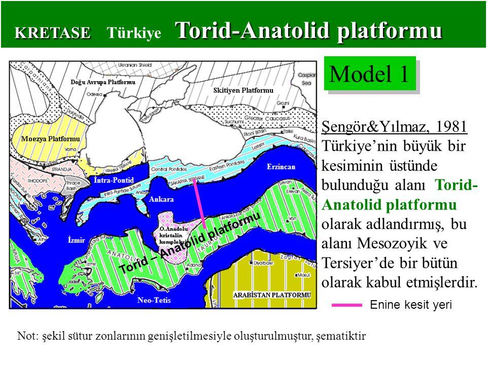 Şengör&Yılmaz, 1981 Türkiye'nin büyük bir kesiminin üstünde bulunduğu alanı Torid- Anatolid platformu olarak adlandırmış, bu alanı Mesozoyik ve Tersiyer'de bir bütün olarak kabul etmişlerdir.