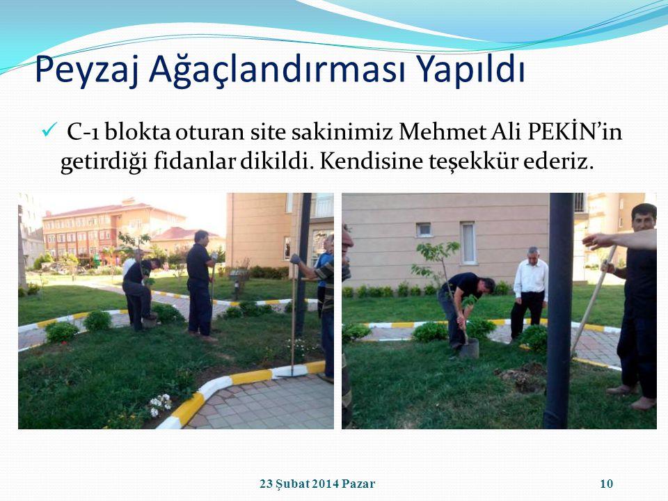 Peyzaj Ağaçlandırması Yapıldı C-1 blokta oturan site sakinimiz Mehmet Ali PEKİN'in getirdiği fidanlar dikildi.