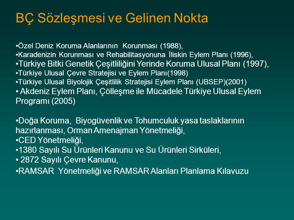 BÇ Sözleşmesi ve Gelinen Nokta Özel Deniz Koruma Alanlarının Korunması (1988), Karadenizin Korunması ve Rehabilitasyonuna İliskin Eylem Planı (1996),