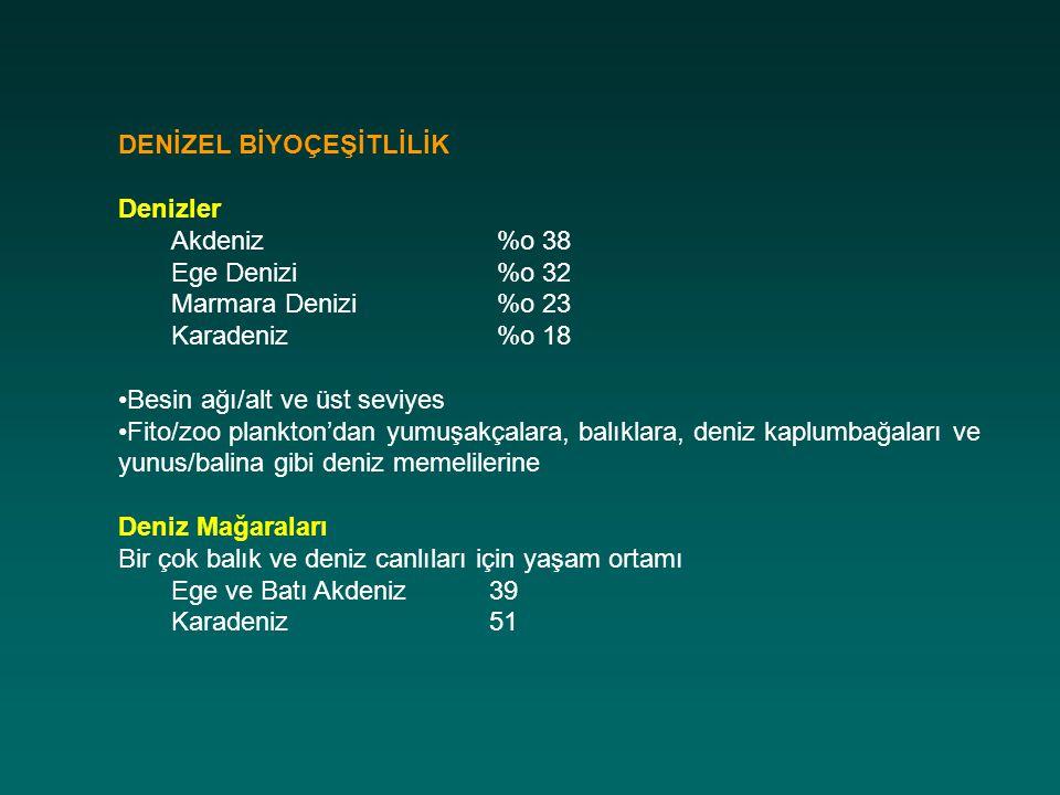 DENİZEL BİYOÇEŞİTLİLİK Denizler Akdeniz %o 38 Ege Denizi %o 32 Marmara Denizi %o 23 Karadeniz %o 18 Besin ağı/alt ve üst seviyes Fito/zoo plankton'dan