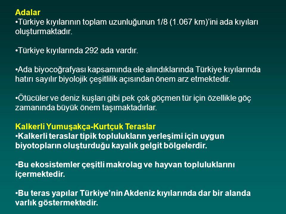 Adalar Türkiye kıyılarının toplam uzunluğunun 1/8 (1.067 km)'ini ada kıyıları oluşturmaktadır. Türkiye kıyılarında 292 ada vardır. Ada biyocoğrafyası