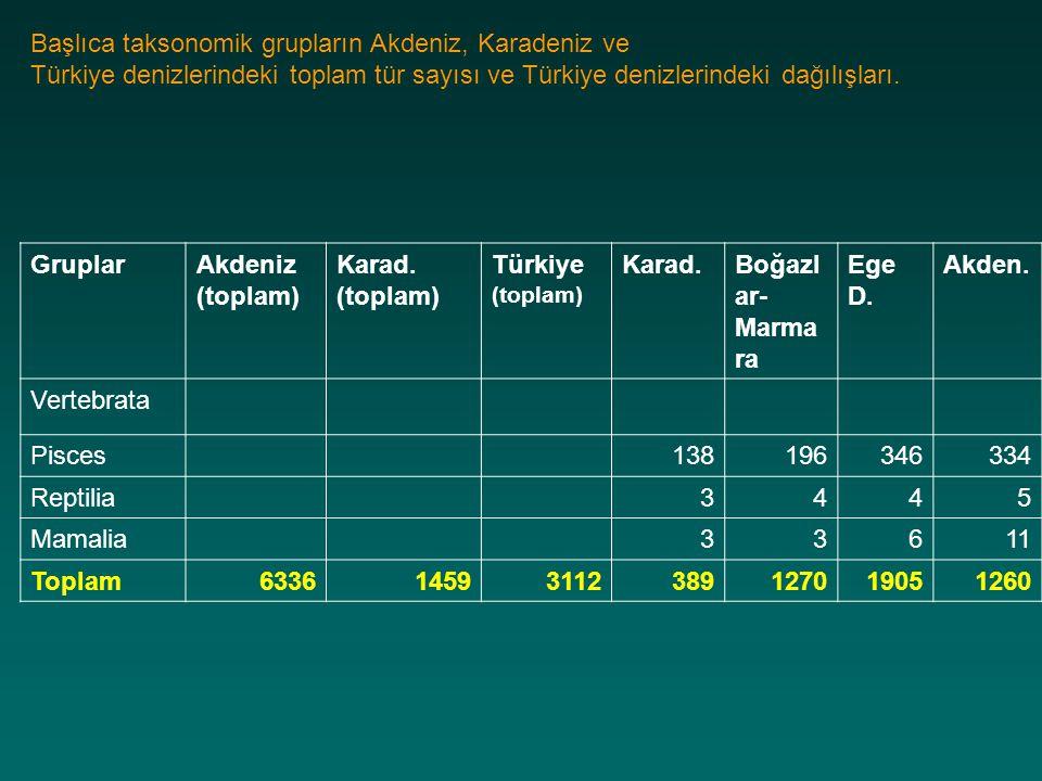 GruplarAkdeniz (toplam) Karad. (toplam) Türkiye (toplam) Karad.Boğazl ar- Marma ra Ege D. Akden. Vertebrata Pisces138196346334 Reptilia3445 Mamalia336