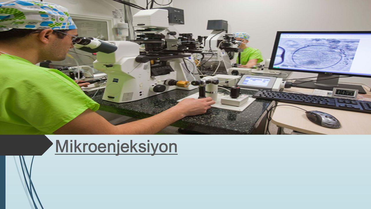 Mikroenjeksiyon, camdan yapılmış bir mikropipetle hücre duvarın- dan mikroskobik boyutta madde ekleme yöntemi.mikropipetlehücre duvarın- dan Diğer tekniklere göre daha zahmetli bir teknik olmasına rağmen özellikle transgenik hayvan üretilmesinde ve gen aktarımında sıklıklatransgenikgen aktarımında kullanılmaktadır.