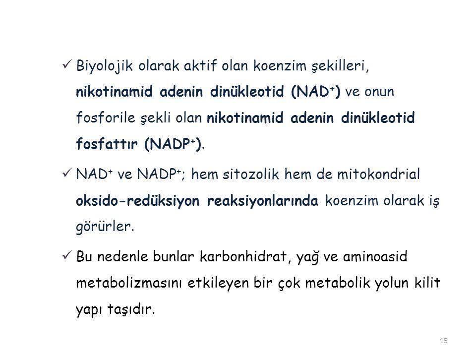 15 Biyolojik olarak aktif olan koenzim şekilleri, nikotinamid adenin dinükleotid (NAD + ) ve onun fosforile şekli olan nikotinamid adenin dinükleotid