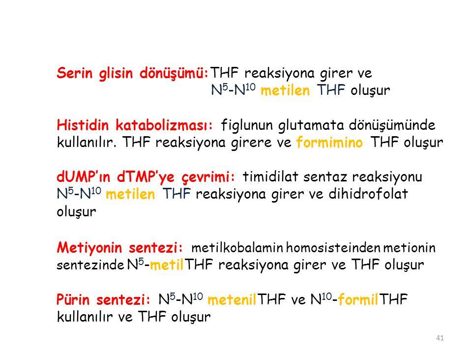 41 Serin glisin dönüşümü:THF reaksiyona girer ve N 5 -N 10 metilen THF oluşur Histidin katabolizması: figlunun glutamata dönüşümünde kullanılır. THF r