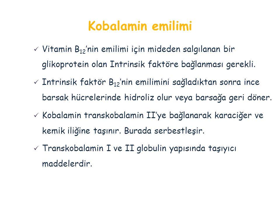 Vitamin B 12 'nin emilimi için mideden salgılanan bir glikoprotein olan Intrinsik faktöre bağlanması gerekli. Intrinsik faktör B 12 'nin emilimini sağ