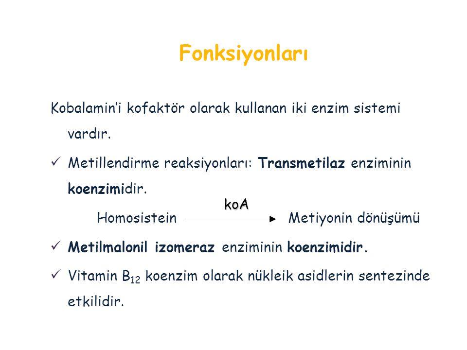 Kobalamin'i kofaktör olarak kullanan iki enzim sistemi vardır. Metillendirme reaksiyonları: Transmetilaz enziminin koenzimidir. Homosistein Metiyonin