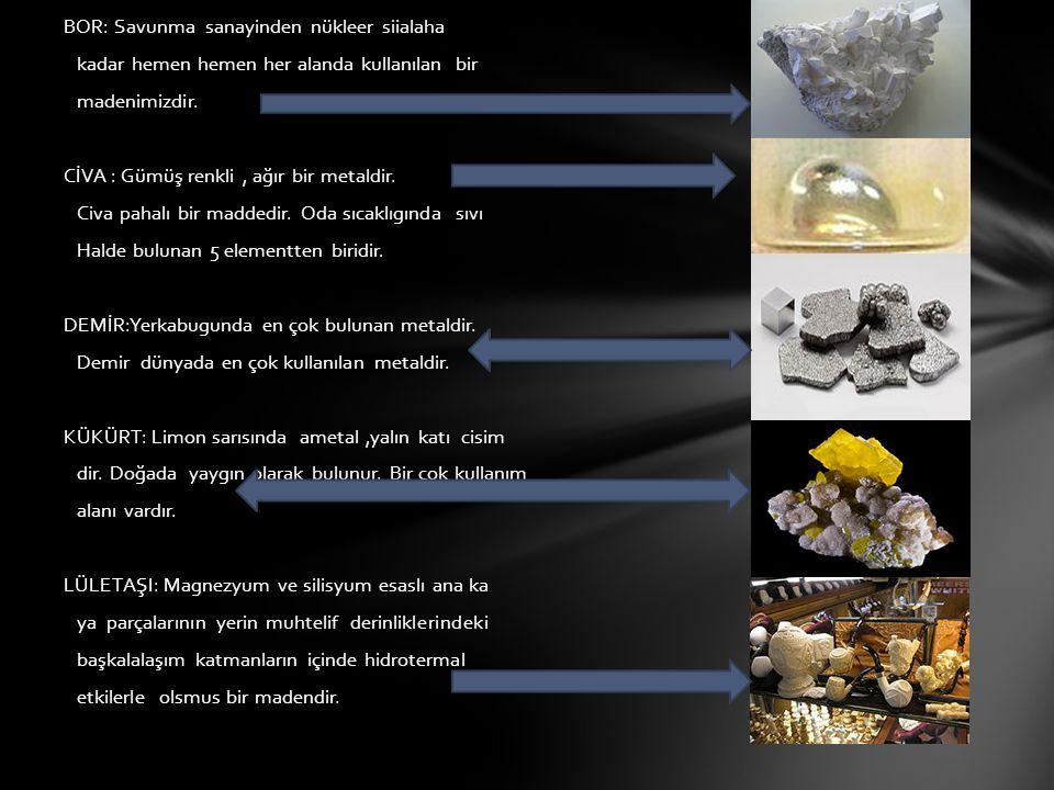 Türk-abd işbirliğiyle türkiye de kurulmuş endüstri kuruluşlarında biridir.
