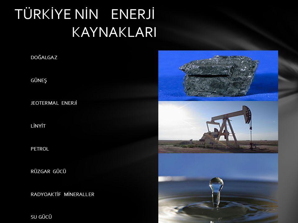 İzmir in aliağa ilçesinde kurulmuştur.