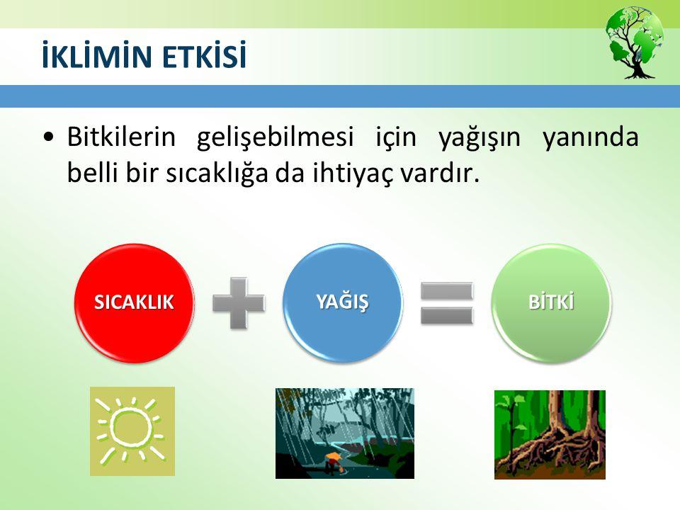 Bozkır (Step) Orta kuşağın yarı kurak iklim bölgelerinde görülen seyrek ve cılız ot topluluklarıdır.