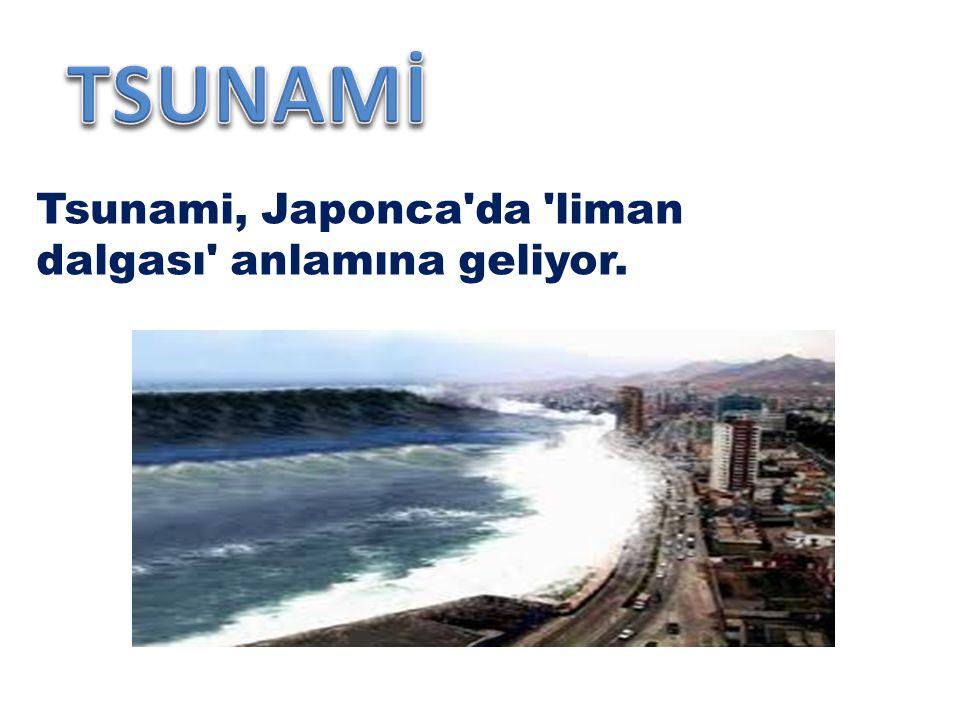 Tsunami, Japonca da liman dalgası anlamına geliyor.