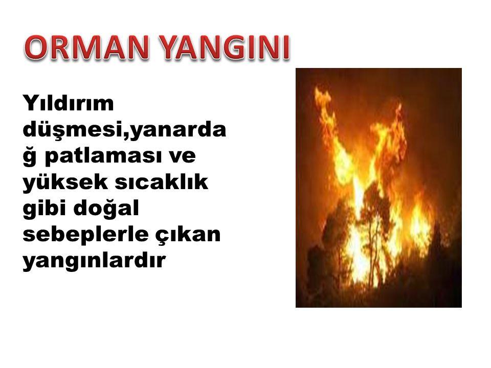 Yıldırım düşmesi,yanarda ğ patlaması ve yüksek sıcaklık gibi doğal sebeplerle çıkan yangınlardır
