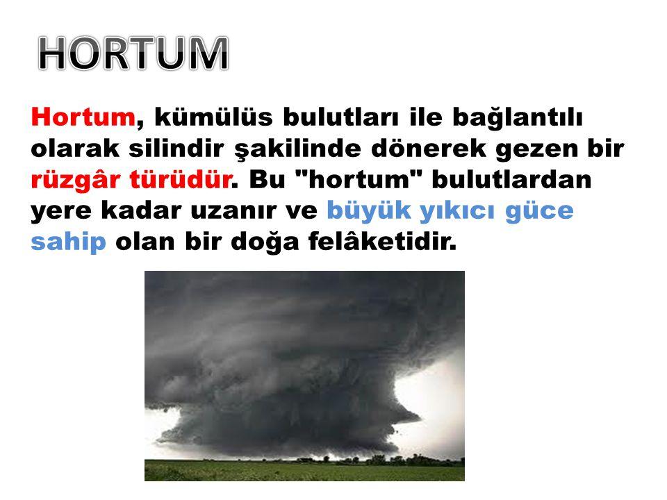 Hortum, kümülüs bulutları ile bağlantılı olarak silindir şakilinde dönerek gezen bir rüzgâr türüdür.
