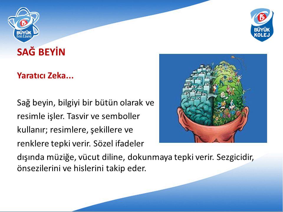 SAĞ BEYİN Yaratıcı Zeka...Sağ beyin, bilgiyi bir bütün olarak ve resimle işler.