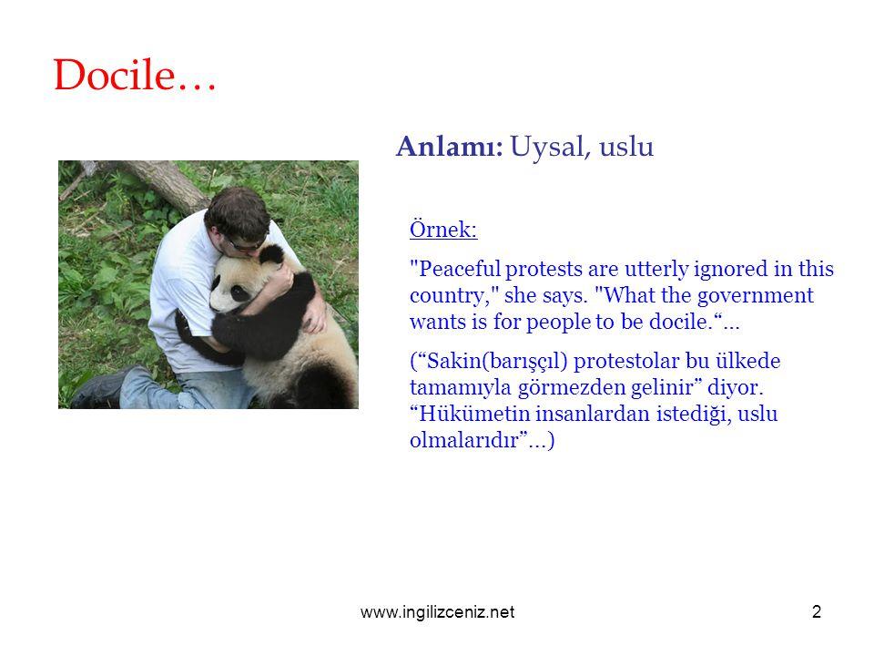 www.ingilizceniz.net2 Docile… Anlamı: Uysal, uslu Örnek: