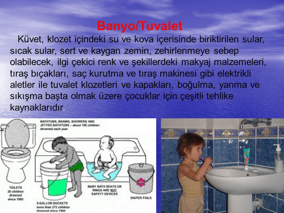 Banyo/Tuvalet Küvet, klozet içindeki su ve kova içerisinde biriktirilen sular, sıcak sular, sert ve kaygan zemin, zehirlenmeye sebep olabilecek, ilgi