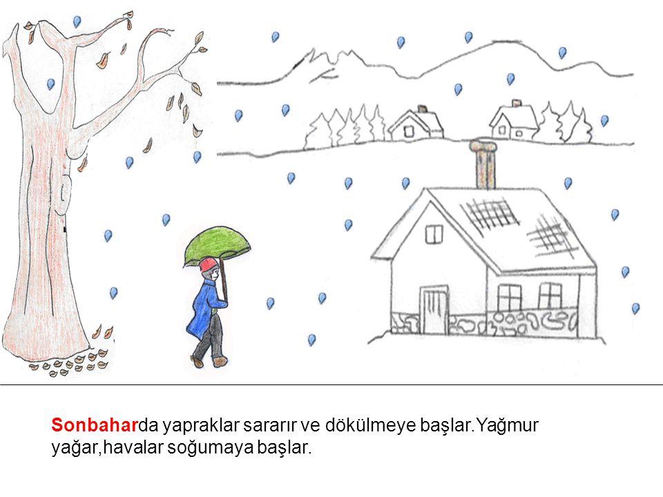 Sonbaharda yapraklar sararır ve dökülmeye başlar.Yağmur yağar,havalar soğumaya başlar.