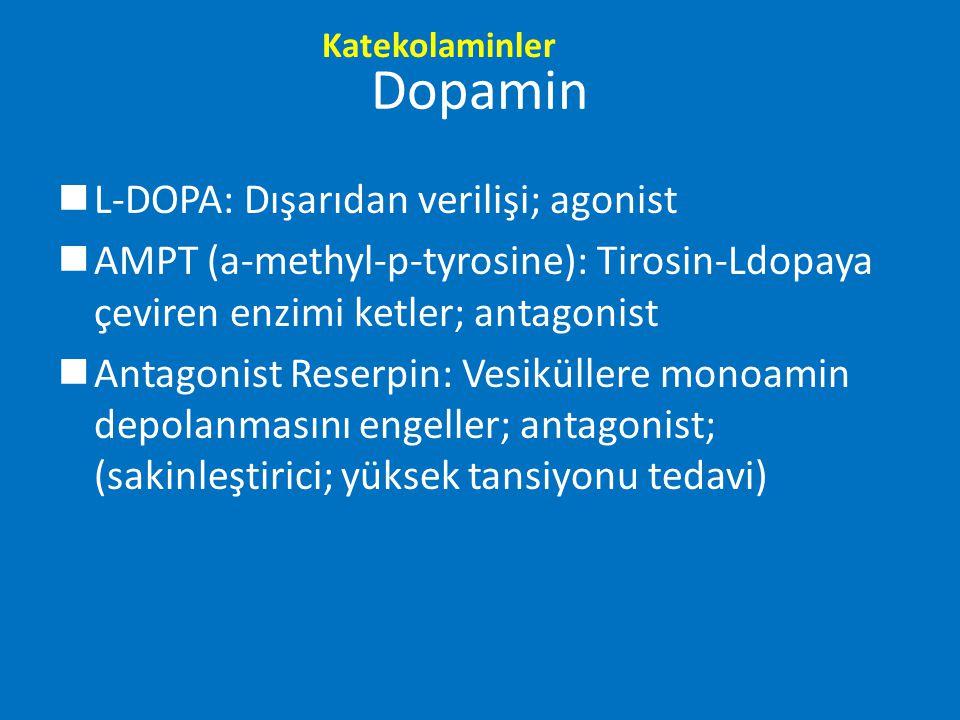 Dopamin nL-DOPA: Dışarıdan verilişi; agonist nAMPT (a-methyl-p-tyrosine): Tirosin-Ldopaya çeviren enzimi ketler; antagonist nAntagonist Reserpin: Vesi