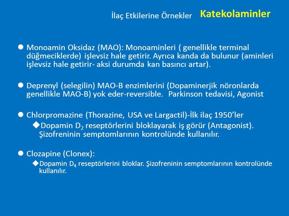 İlaç Etkilerine Örnekler lMonoamin Oksidaz (MAO): Monoaminleri ( genellikle terminal düğmeciklerde) işlevsiz hale getirir. Ayrıca kanda da bulunur (am