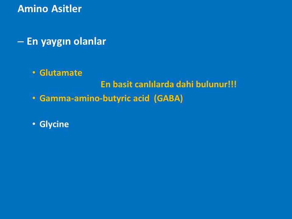 Amino Asitler – En yaygın olanlar Glutamate En basit canlılarda dahi bulunur!!! Gamma-amino-butyric acid (GABA) Glycine
