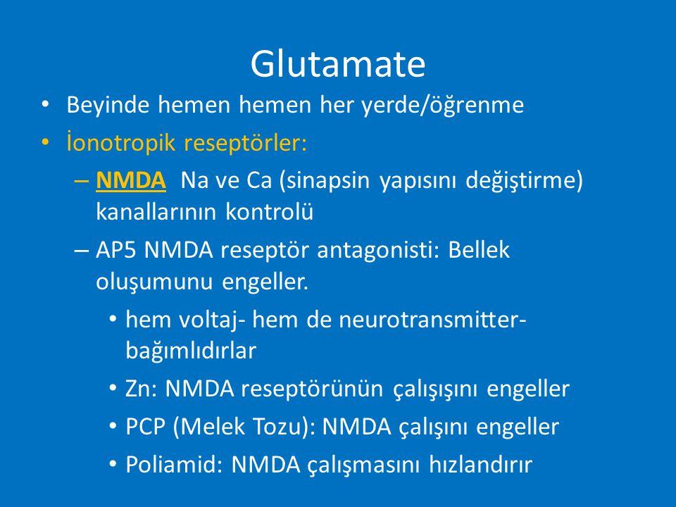 Glutamate Beyinde hemen hemen her yerde/öğrenme İonotropik reseptörler: – NMDA Na ve Ca (sinapsin yapısını değiştirme) kanallarının kontrolü – AP5 NMD