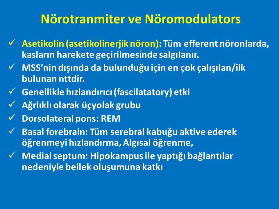 Asetikolinerjik Yolaklar: Nörotranmiter ve Nöromodulators