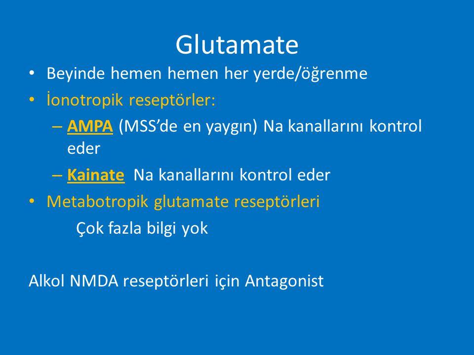 Glutamate Beyinde hemen hemen her yerde/öğrenme İonotropik reseptörler: – AMPA (MSS'de en yaygın) Na kanallarını kontrol eder – Kainate Na kanallarını