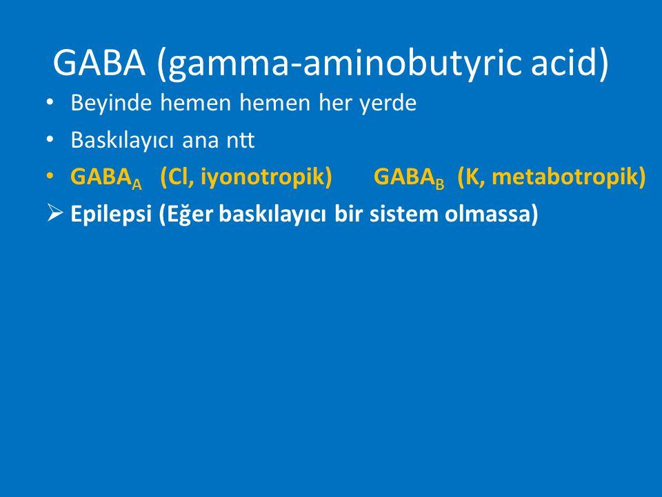 GABA (gamma-aminobutyric acid) Beyinde hemen hemen her yerde Baskılayıcı ana ntt GABA A (Cl, iyonotropik) GABA B (K, metabotropik)  Epilepsi (Eğer ba