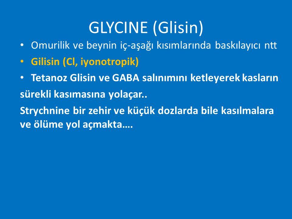 GLYCINE (Glisin) Omurilik ve beynin iç-aşağı kısımlarında baskılayıcı ntt Gilisin (Cl, iyonotropik) Tetanoz Glisin ve GABA salınımını ketleyerek kasla