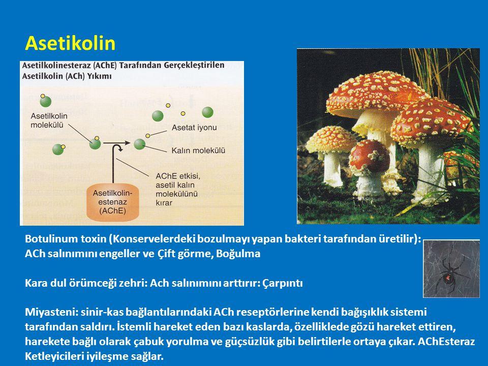 Asetikolin Botulinum toxin (Konservelerdeki bozulmayı yapan bakteri tarafından üretilir): ACh salınımını engeller ve Çift görme, Boğulma Kara dul örüm