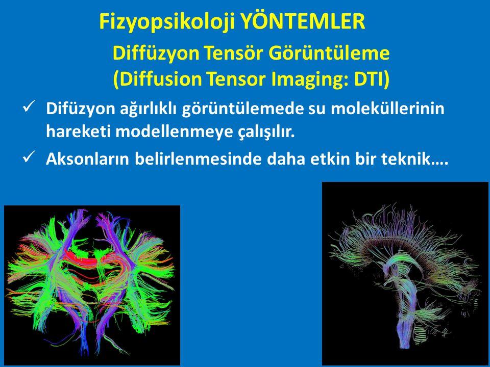 Diffüzyon Tensör Görüntüleme (Diffusion Tensor Imaging: DTI) Difüzyon ağırlıklı görüntülemede su moleküllerinin hareketi modellenmeye çalışılır. Akson