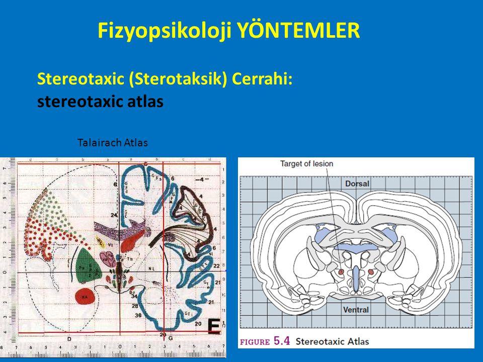 ElektoEnsefaloGrafi (electroencephalography) EEG: Richard Caton 1875: Beyin elektriksel değişiklikler deri üzerinden kaydedilebilir (hayvanlarda) Hans Berger 1929: Alfa dalgası (insanlarda) Milyonlarca nörondan kaydedilen aktivite (Makro elektrod-Mikro elektrot) Mikro Volt (µV) düzeyinde aktivite Milisaniye düzeyinde zamansal çözünürlük Fizyopsikoloji YÖNTEMLER
