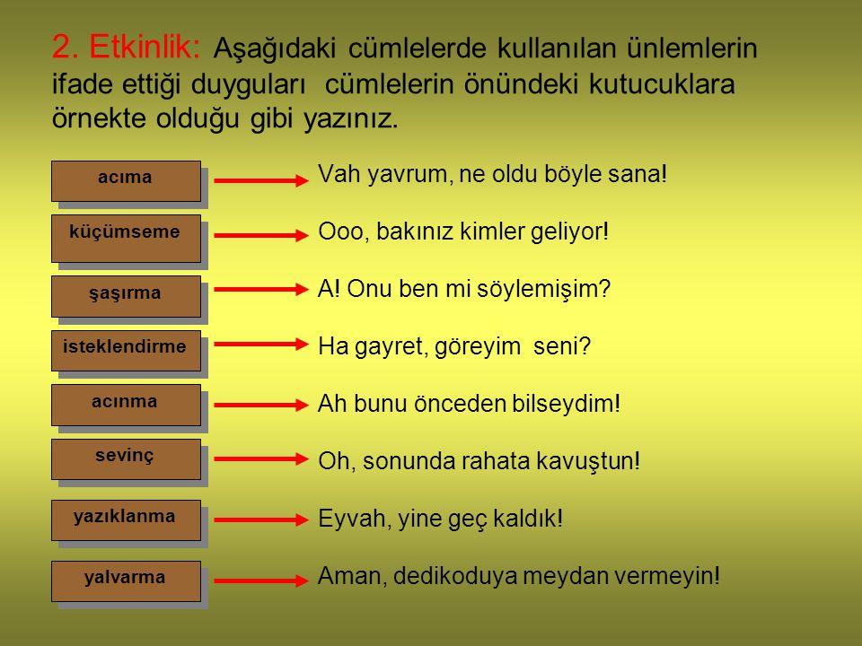 2. Etkinlik: Aşağıdaki cümlelerde kullanılan ünlemlerin ifade ettiği duyguları cümlelerin önündeki kutucuklara örnekte olduğu gibi yazınız. Vah yavrum