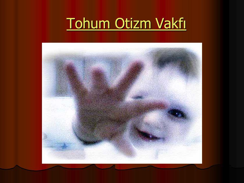 Tohum Otizm Vakfı Tohum Otizm VakfıTohum Otizm VakfıTohum Otizm Vakfı