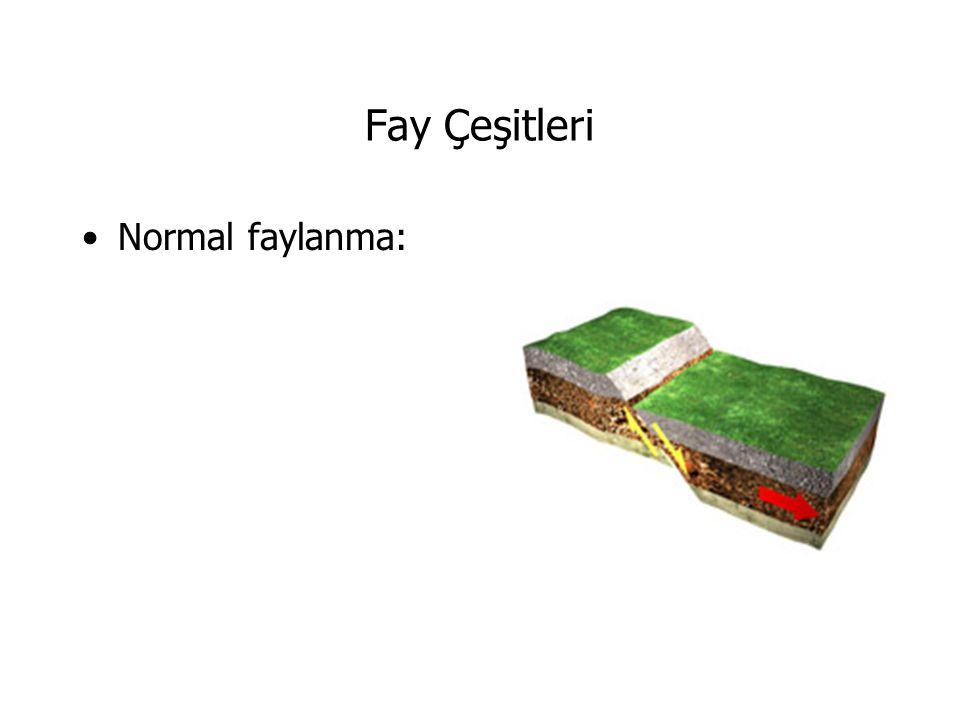 Türkiye Levha Haritası Türkiye üç büyük levhanın etkisi altındadır.