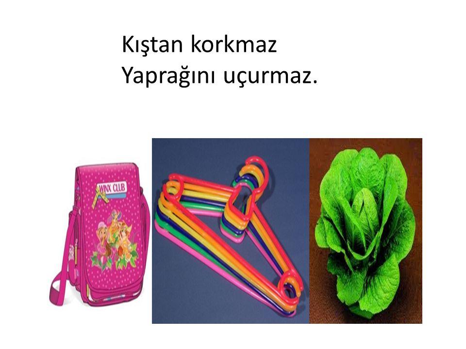 SÜRAHİ
