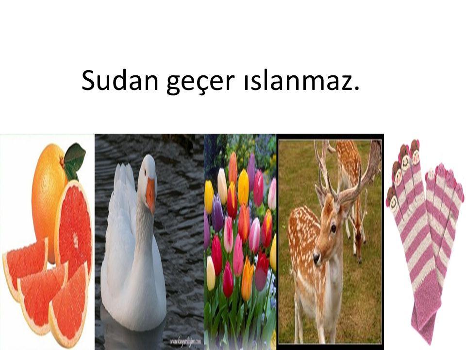 Sudan geçer ıslanmaz.