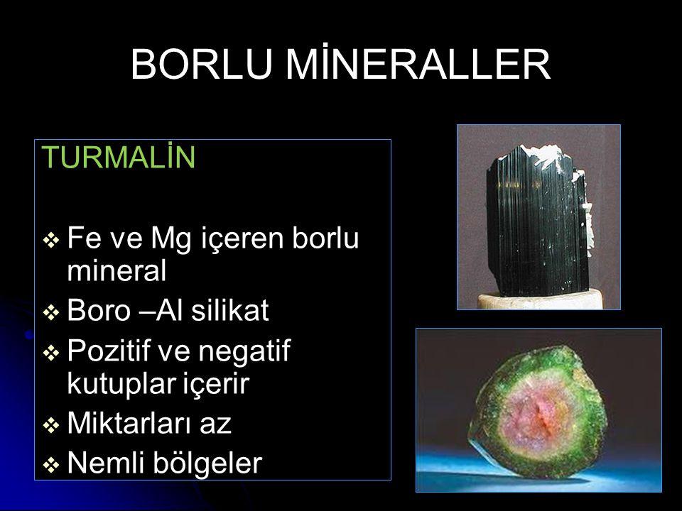 BORLU MİNERALLER TURMALİN   Fe ve Mg içeren borlu mineral   Boro –Al silikat   Pozitif ve negatif kutuplar içerir   Miktarları az   Nemli bö