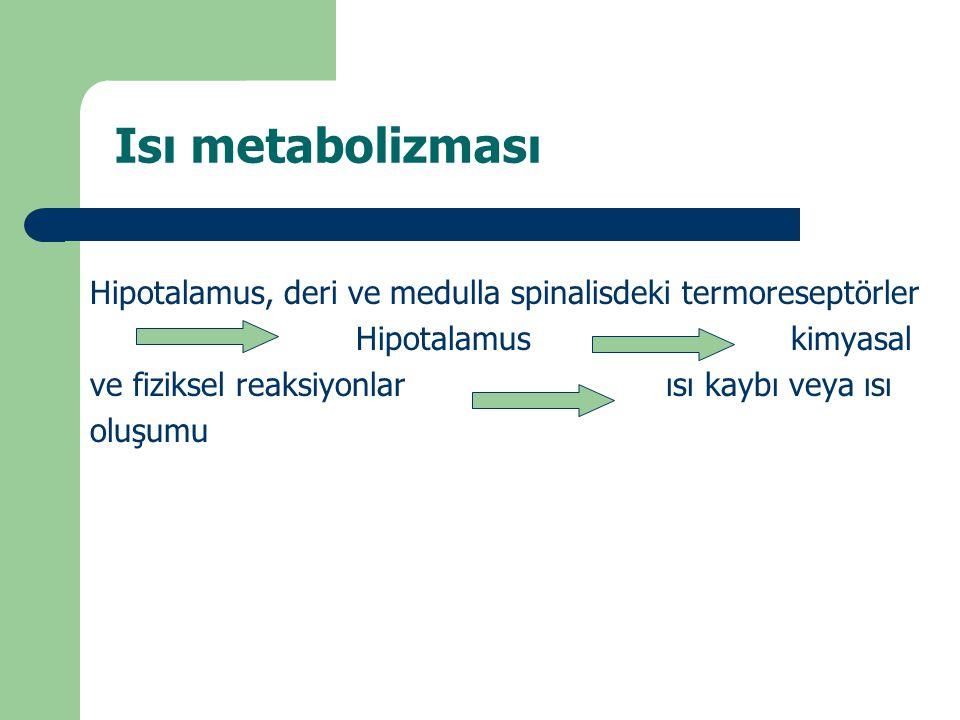 Isı metabolizması Hipotalamus, deri ve medulla spinalisdeki termoreseptörler Hipotalamus kimyasal ve fiziksel reaksiyonlarısı kaybı veya ısı oluşumu
