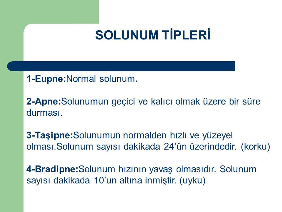 SOLUNUM TİPLERİ 1-Eupne:Normal solunum.