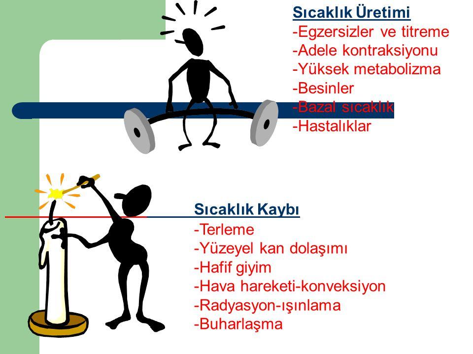 Sıcaklık Kaybı -Terleme -Yüzeyel kan dolaşımı -Hafif giyim -Hava hareketi-konveksiyon -Radyasyon-ışınlama -Buharlaşma Sıcaklık Üretimi -Egzersizler ve titreme -Adele kontraksiyonu -Yüksek metabolizma -Besinler -Bazal sıcaklık -Hastalıklar