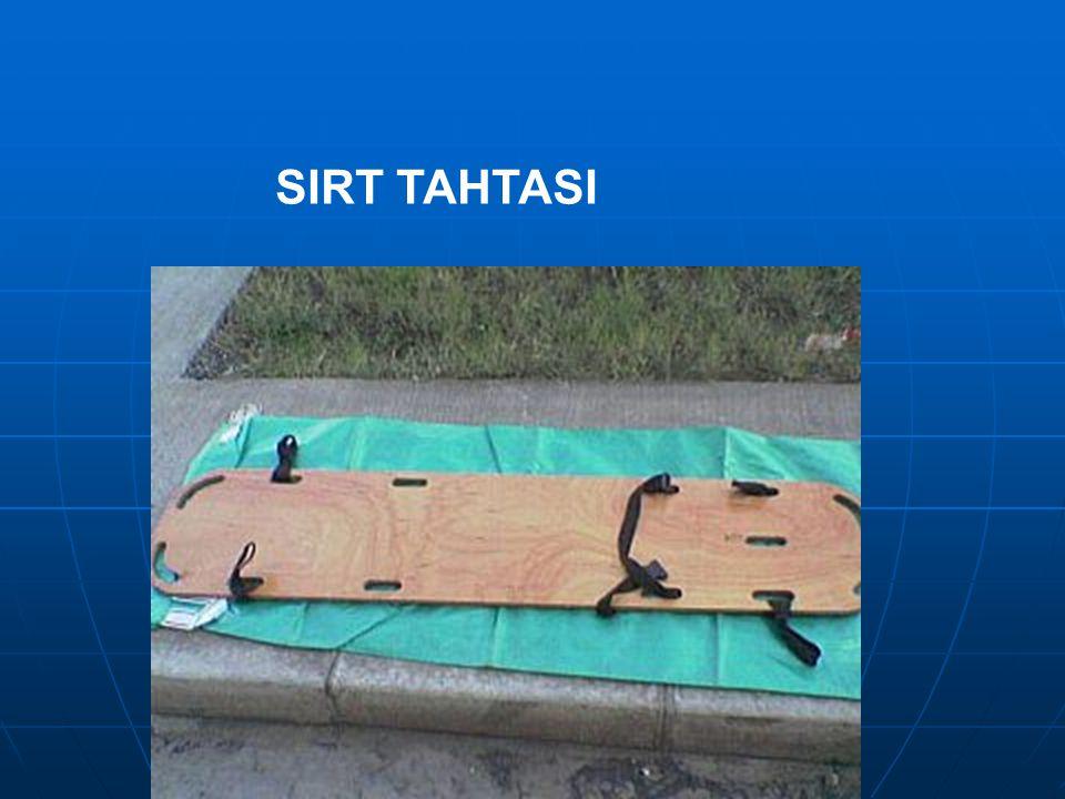 SIRT TAHTASI